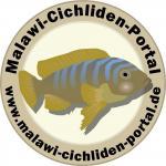 Malawi-Cichliden-Portal